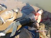 aleppo-massacre-20130129-syrianfreepress-net- (5)