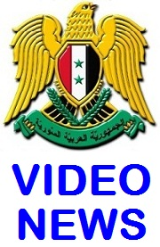 Daily Video News