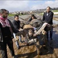 FSA and l-Nusra trade in human organs in Aleppo ~ FSA e al-Nusra commerciano in organi umani in Aleppo ~ (Eng-Ita)