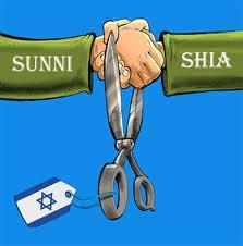sunni-shia-united
