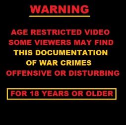 warning-video-crimes-20130930