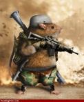 Rat-Soldier-20131022-450