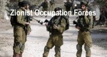zionist-occupation-forces-2014