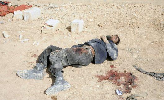 terrorist-killed-by-SAA-20140407-5
