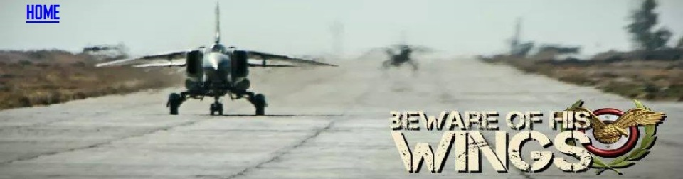 SAF-beware-of-his-wings-990x260-HOME