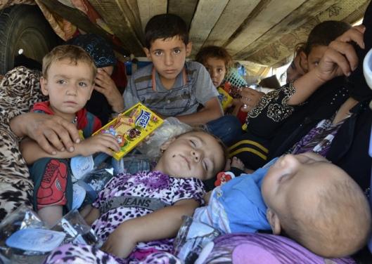 displaced-yazidi-2