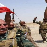 Kurdish Resistance in Kobani [photo collection]