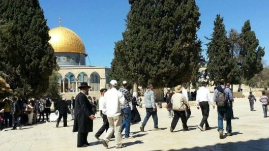 This file photo shows Israeli settlers in the al-Aqsa Mosque compound in East al-Quds.