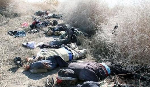 KDaesh Gangs Gunned Down-2