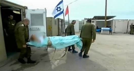 Terrorists-Israeli-hospitals-occupied-golan
