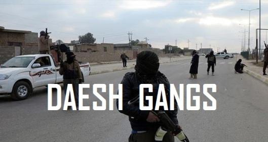 DAESH-gangs-20150122-620x330-2