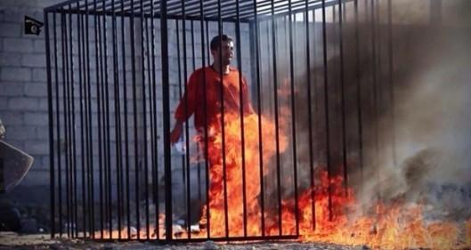 Daesh terrorists have burned the Jordanian pilot alive