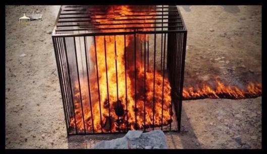 Daesh terrorists have burned the Jordanian pilot alive2