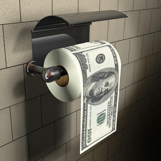 dollar-toilet-papaer-2015-529