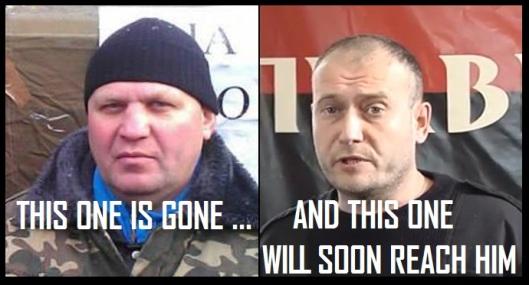 Dmitry-Yarosh-will-go
