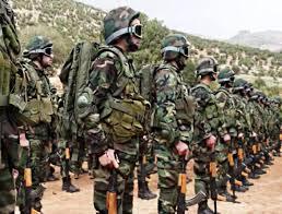 Hezbollah55