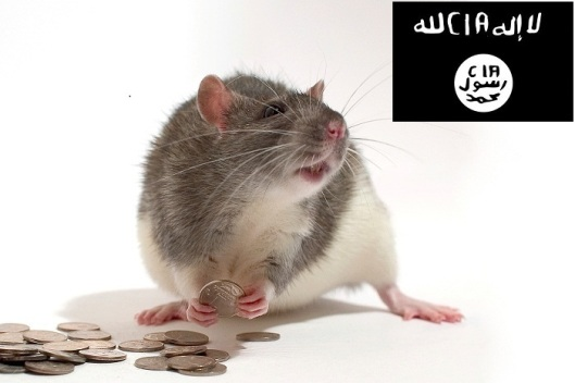 isis-cia-money