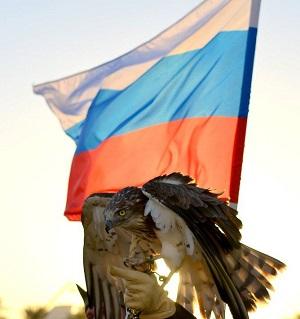 peregrine-falcon-rus-flag-300x319