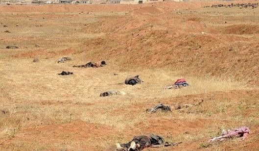 rats-killed-deir-ezzur-20150603