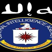 "US, Turkish intelligence coordinated ""DAESH"" leader al-Baghdadi's transfer to Turkey for treatment"