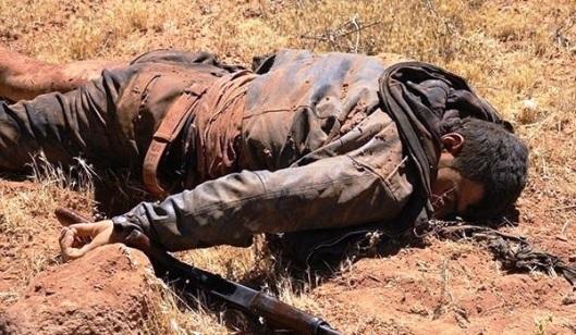 mercenary-terrorist-killed-in-syria-archive-20151105-1