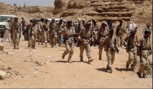 yemeni-forces-20151123