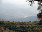 military operations north Latakia (18)