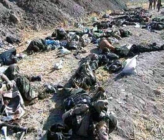 terrorists-killed-by-saa-20151129-529