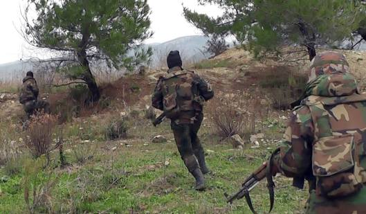 SAAF-lattakia-20160119-1