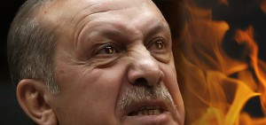 rosted-erdogan