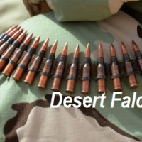 Battle for Palmyra: 'Desert Falcons' and SAA ready to swoop in on Daesh [Photo gallery]