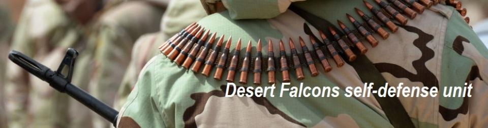 Desert Falcons self-defense unit-990x260