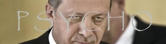 erdogan-psyco-960x260