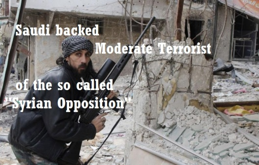 moderate-terrorist-3