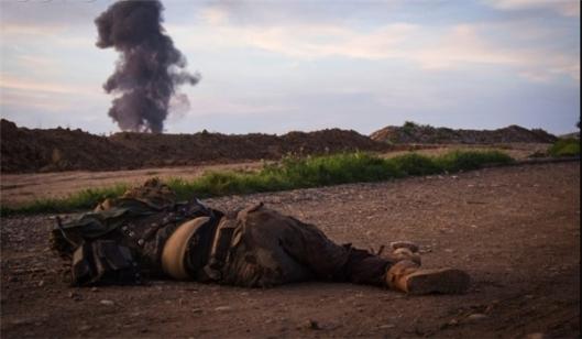Terrorist Commanders Killed