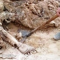 Mass grave discovered in Palmyra