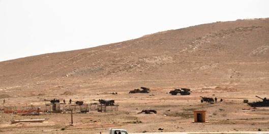 army-Palmyra-7
