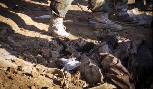 Iraqi Forces Kill 110 ISIL Terrorists Near Fallujah City