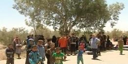 families-people-return-al-Batma-Triangle-Homs-fleeing-ISIS-2