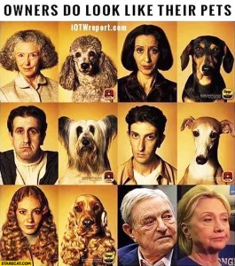 owners-do-look-like-their-pets-george-soros-hillary-clinton