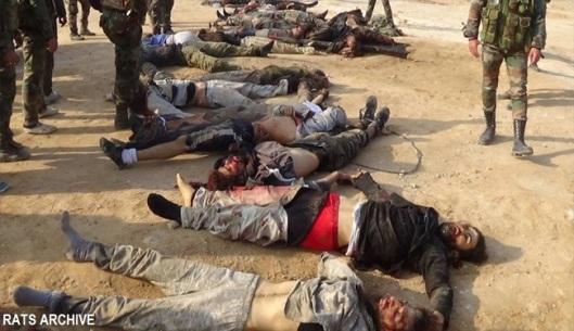 Syrian Arab Army kills several Daesh terrorists